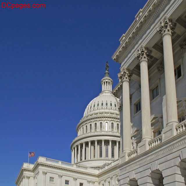 U.S. Capitol Building - Flags & Dome