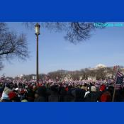 American Flags at the inauguration, January 20, 2009