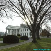 View of White House taken from North West Corner of estate.
