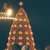 2002 National Christmas Tree