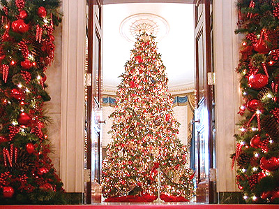 The Blue Room holds the official White House Christmas tree. This year artisans from each state and territory were asked to create ornaments representing birds from locale
