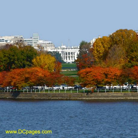 Fall in Washington DC