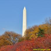 View of Washington Monument during Autumn.