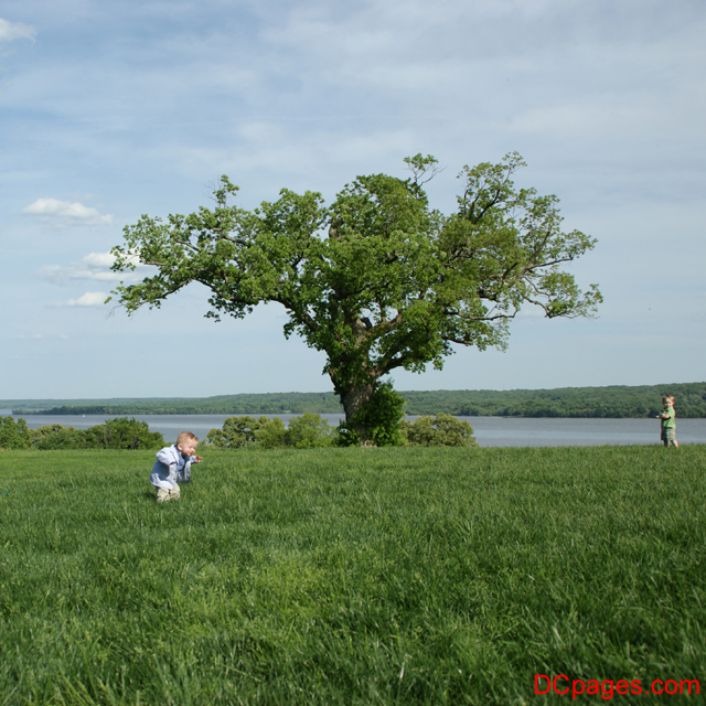 Two little boys playing at George Washington's Mount Vernon Estate