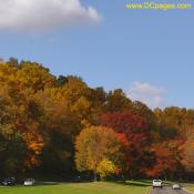 George Washington Parkway during Autumn season.