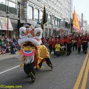 The Lions Dance during Chinese New Year celebrations