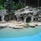 The National Zoo has pools and rocky substrates for the both seals and sea lions to live in.