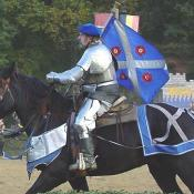 A Knight in Full Plate Mail