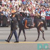 Ronald Reagan's horse is led down Constitution Avenue.